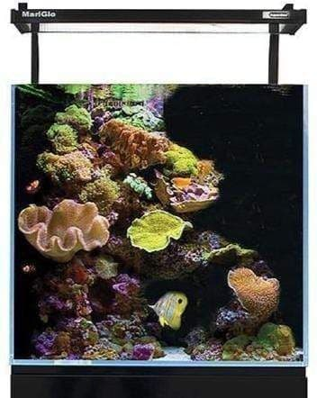 Aqua One Mini Reef 90 - Aquarium Only