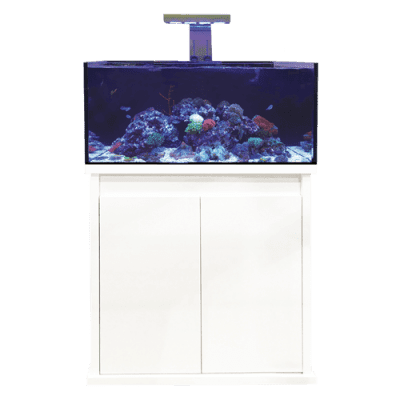 D-D Reef-Pro 900 Clarisea - Aquarium And Cabinet - Anthracite