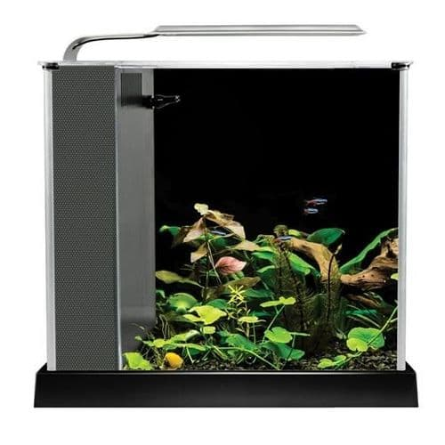 Fluval Spec 10L - Aquarium Setup - Black