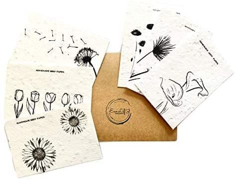 Plantable Seed Cards - 6 Pack