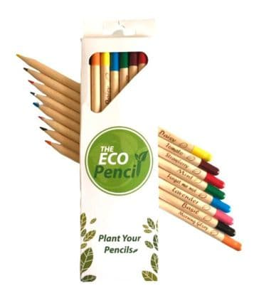 Plantable Seed Pencils - Coloured