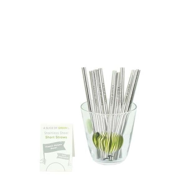 Stainless Steel Straw - Mini - Single