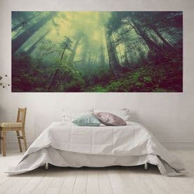 Panoramic Misty Forest Scape