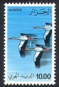Algeria 1979 White Storks  /  Birds  /  Nature  /  Plane  /  Airmail 1v (n39313)