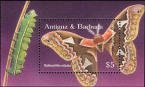 Antigua & Barbuda 2002 Silk Moth/ Nature/ Insects/ Wildlife/ Moths/ Butterfly  1v m/s (b4525c)