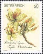 Austria 2018 Yellow Rhododendron/ Plants/ Flowers/ Nature 1v (at1298)