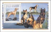 Centrafricaine/Central African Rep 1996  Vizsla/ Dogs/ Pets/ Animals/ Nature/ Working 1v m/s (s342)
