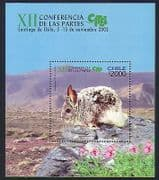 Chile 2002 Animals  /  Nature  /  Chinchilla  /  CITES  /  Conservation  /  Mountains 1v m  /  s n33367