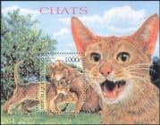 Congo 1999 Domestic Cats/ Pets/ Animals/ Nature 1v m/s (s1774)