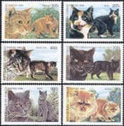 Congo 1999 Domestic Cats/ Pets/ Animals/ Nature 6v set (s1773)