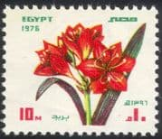 Egypt 1976 Amaryllis/ Flowers/ Plants/ Nature/ Festivals 1v (n44540)