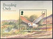 Falklands 2004 Breeding Owls/ Barn Owl/ Birds/ Raptors/ Conservation 1v m/s (n13168)
