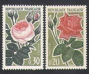 France 1962 Roses  /  Flowers  /  Nature  /  Horticulture  /  Animation 1v (n34172)