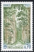 France 1991 Troncais Forest/ Forestry/ Trees/ Plants/ Nature/ Environment 1v (n43363)