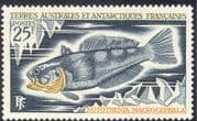 FSAT/TAAF 1971 Orange-throated Rockcod/ Fish/ Nature/ Marine/ Wildlife/ Conservation/ Environment 1v (n23492)