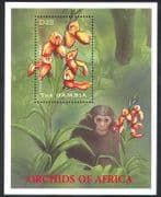 Gambia 2001 Orchids  /  Flowers  /  Plants  /  Nature  /  Chimpanzee  /  Orchid 1v m  /  s (b9156)