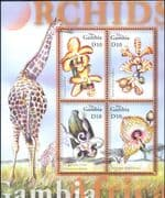 Gambia 2001 Orchids/ Flowers/ Plants/ Nature/ Orchid/ Giraffe/ Wildlife 1v m/s (n40190a)