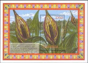 Gambia 2002  Swamp Arum/ Cape Weed/ Medicinal Plants/ Flowers/ Nature  1v m/s  (s3781h)