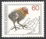 Germany 1981 Black Coot/ Birds/ Ducks/ Nature Protection/ Conservation/ Environment 1v (n31504)