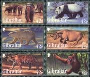 Gibraltar 2011  Tiger/ Panda/ Polar Bear/ Elephant/ Rhino/ Animals/ Nature/ Wildlife 6v set (b8436c)