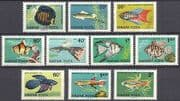 Hungary 1962 Tropical Fish  /  Ornamental  /  Aquaria  /  Discus  /  Tetra  /  Nature 10v set n39864