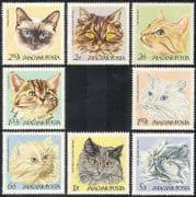 Hungary 1968 Cats  /  Pets  /  Domestic Animals  /  Nature  /  Kitten 8v set (n39951)