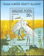 Hungary 1980 Great Egrets/ Protected Birds/ Conservation/ Environment/ Nature 1v m/s (b2512)