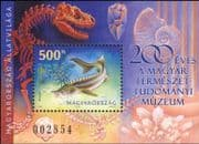Hungary 2002 Sterlet/ Fish/ Fishing/ Nature/ Animals/ Wildlife/ Sturgeon/ Conservation/ Environment 1v m/s (n45274)