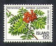 Iceland 1980 Trees  /  Berries  /  Fruit  /  Plants  /  Nature  /  Environment 1v (n38175)