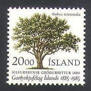 Iceland 1985 Horticulture  /  Trees  /  Plants  /  Nature 1v (n36265)