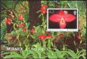 Jersey 2004 Flowers/ Orchids/ Plants/ Nature 1v m/s (n26133)
