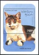 Laos 1995 Domestic Cats/ Pets/ Animals/ Nature 1v m/s (b8128)