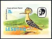 Lesotho 1982 Birds  /  Hoopoe  /  Mountain  /  Nature Postcard  a84