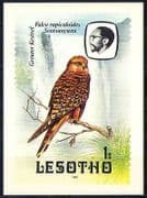 Lesotho 1982 Birds  /  Kestrel  /  Waterfall Postcard (a83)