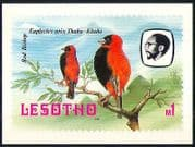 Lesotho 1982 Birds  /  Red Bishop  /  Trees  /  Nature Postcard a93
