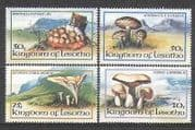 Lesotho 1983 Fungi  /  Mushrooms  /  Nature 4v set (b1283a)