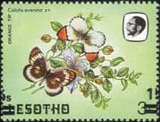 Lesotho 1984 Butterflies 15s on 3s misplaced surcharge + reverse print ERROR 1v (b3691n)