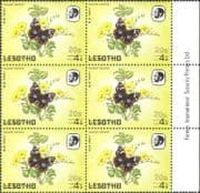 Lesotho 1984 Butterflies/ Butterfly/ Insects/ Nature/ 20s on 4s Surcharge/ FAINT print variety/ error 6 x 1v blk (b3690h)