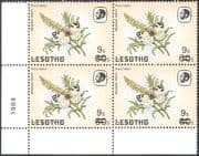 Lesotho 1986 Butterflies/ Meadow White Butterfly/ Insects/ Nature  9s on 60s surcharge blk a62