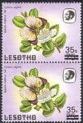 "Lesotho 1986 Surcharge 35s on 75s/ Large ""S""/ Small ""s""/ Butterflies/ Insects/ Nature 2v pr (n43234)"
