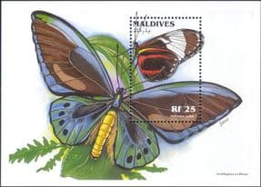 Maldives 1996  Butterflies/ Insects/ Nature/ Plants/ Butterfly  1v m/s  (s2166)