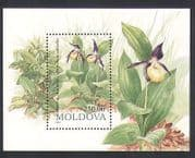 Moldova 1993 Lady's-slipper Orchid  /  Flowers  /  Orchids  /  Nature  /  Plants 1v m  /  s (n33989)