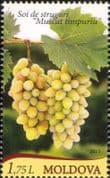 Moldova 2013 Grapes/ Wine/ Alcohol/ Plants/ Nature/ Horticulture/ Farming 1v (md1024)