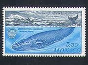 Monaco 1983 Whales  /  Marine  /  Nature  /  Conservation  /  Protection 1v (n33513)