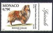 Monaco 2003 Collie  /  Dogs  /  Dog Show  /  Animals  /  Pets  /  Nature 1v n38315