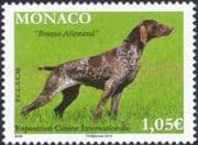 Monaco 2015 Dog Show/ German Pointer/ Dogs/ Animals/ Nature/ Pets 1v (mc1077)