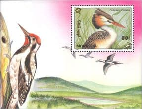 Mongolia 1993  Birds/ Great Crested Grebe/ Woodpecker/ Nature/ Wildlife  1v m/s  (n12201)