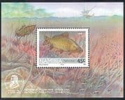 Namibia 1992 FISH  /  Dragonfly  /  Insect  /  Nature f  /  s (n16675)