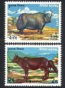 Nepal 1973 Cow  /  Yak  /  Cattle  /  Domestic Animals  /  Nature  /  Farming 2v set (n38834)