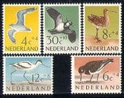 Netherlands 1961 Gulls/ Curlew/ Avocet/  Birds/ Nature/ Welfare/ Health 5v set (n29797)